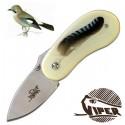 Drop ghiandaia - Viper
